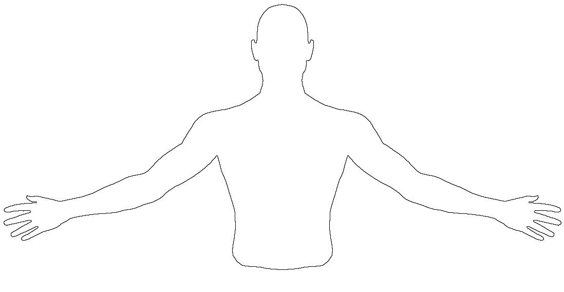 diagrams of the upper extremities and torso : torso diagram - findchart.co